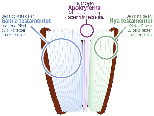 Bibeldiagram_600